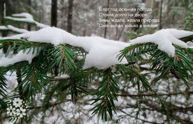Красивые стихи А.С. Пушкина про зиму для детей 3-4 класса