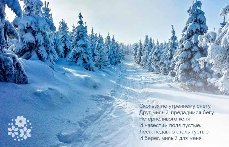 Стихи Александра Сергеевича Пушкина про зиму для детей 5-6 класса