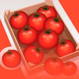 Загадки про помидоры для детей