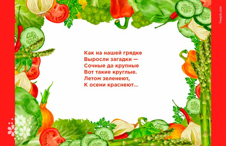Загадки про помидор для школьников